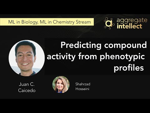 Predicting compound activity from phenotypic profiles