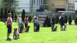 preview picture of video 'DEN OTEVŘENÝCH DVEŘÍ V ÚTULKU BETY V OSTROVĚ - PREZENTACE II. ZKO č. 124 OSTROV'