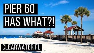 🌊 Tour Pier 60 Park + Beach Tips 🏖️ Clearwater Beach Florida