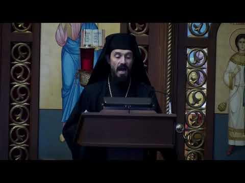 Vianočný príhovor - vladyka Milan Lach, SJ