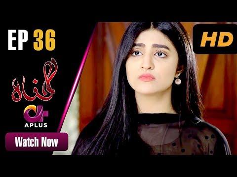 Gunnah - Episode 36 | Aplus Dramas | Sara Elahi, Shamoon Abbasi, Asad Malik | Pakistani Drama