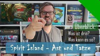 Spirit Island   Ast Und Tatze   Überblick