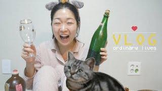 [브이로그] 직장인의 헬요일은 삼겹살에 맥주🥓 불금은 훠궈에 고량주🥘 주말은 고양이랑 집순이😺