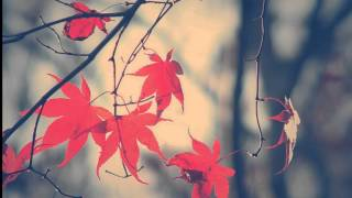 BEETHOVEN - VIOLIN ROMANCE No 2 Op 50 - Autumn Leaves -