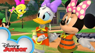 Minnie & Daisy Are Camp Counselors | Mickey Mornings | Mickey Mouse Roadster Racers | Disney Junior