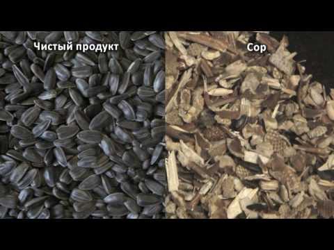 Очистка семян подсолнечника фотосепаратором