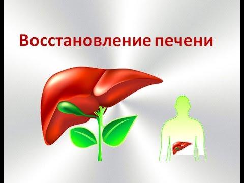 Умеренные диффузные изменения паренхимы печени по типу жирового гепатоза