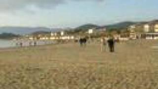preview picture of video 'Castiglione della Pescaia'