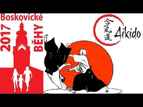 Ukázka bojového umění - aikido, Boskovické běhy 2017