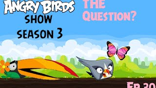 Angry Birds Show Ep30 The Question?