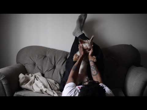 Puppy Love (Official Music Video)...