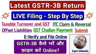 Latest GSTR 3B Return LIVE Filing Hindi: Step By Step-ITC Offset Liabilities Challan Payment Everify