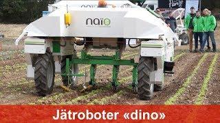 """Roboter """"dino"""" von Naio-Technologies zur Unkrautregulierung im Gemüsebau"""