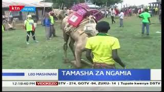 Tamasha za ngamia: Wanabiashara Samburu walalamikia uchaguzi