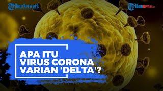 Apa Itu Virus Corona Varian 'Delta' yang Pertama Kali Ditemukan di India?