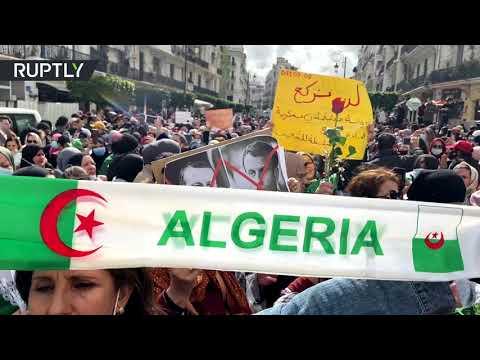 العرب اليوم - شاهد:آلاف النساء يشاركن في مسيرة يوم المرأة في الجزائر