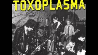 Toxoplasma - Vollgas