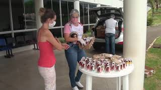Voluntários formam rede de apoio e entregam comida para quem espera por atendimento no Hospital de Campanha