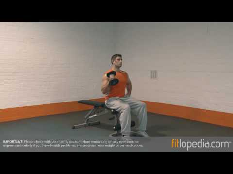 Single Arm Seated Dumbbell Hammer Curl