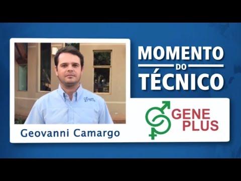 Momento do Técnico Geovanni