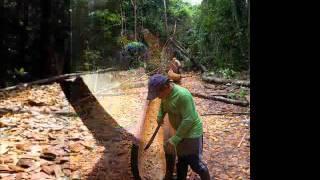 Oficina de Construção de Canoa na Terra Indígena Yanomami