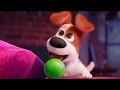 The Secret Life of Pets - Max Memorable Moments