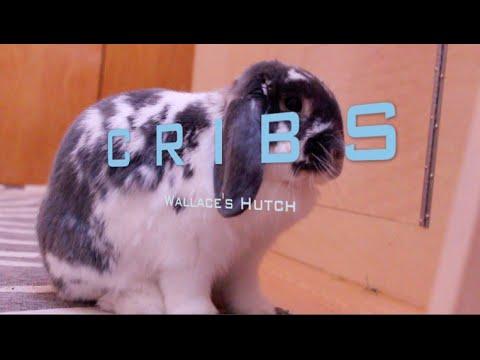 Cribs Presents: Wallace's Hutch