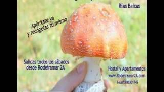 Video del alojamiento Apartamentos Rodeiramar