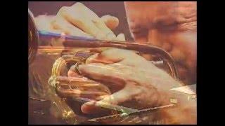 Pagode Progressivo - True Illusion & Marcio Montarroyos - MNBA 2001