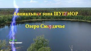 Озеро свиношное шатурский район рыбалка