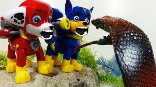 Щенячий Патруль новые серии Змея и Ромео Герои в Масках Мультики про игрушки PAW PATROL для детей