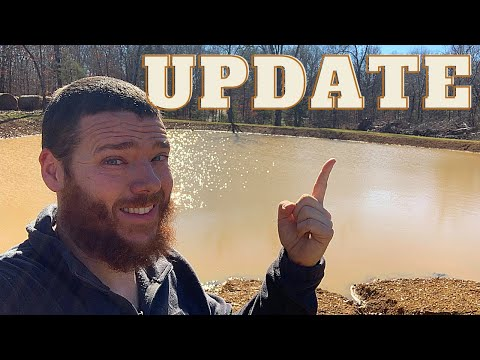 , title : 'Pond, Cattle, Chicken, Plant Cutting & Geothermal UPDATE | January 2021