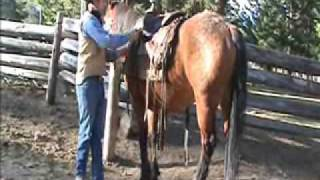 Saddling a horse - Part 4/4
