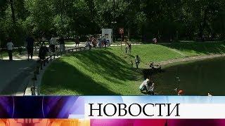 В Москве сегодняшний день может стать самым жарким с начала года.