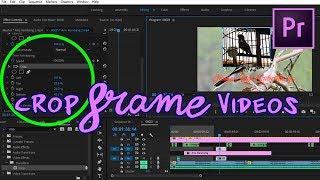 cara crop video di adobe premiere pro cc 2017 - Thủ thuật