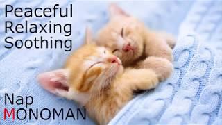 [Peaceful Relaxing Soothing] Nap - MONOMAN