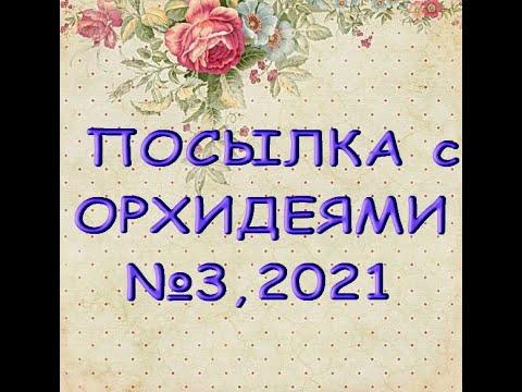 ПОСЫЛКА с потрясными ОРХИДЕЯМИ №3,2021!!!