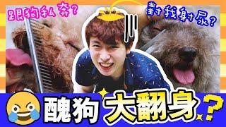 【⚠️突髮!🐶醜狗大翻身?】MUFFIN對我射尿?💢BROWNIE跟「狗王子」私奔!(中字)