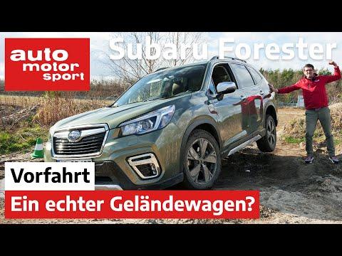 Subaru Forester e-Boxer (2020): Echter Geländekraxler? – Fahrbericht/Review | auto motor und sport