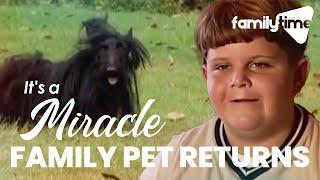 Grady's Return - It's a Miracle