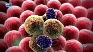 Conversando Sobre o Câncer: fatores genéticos influenciam no desenvolvimento do câncer