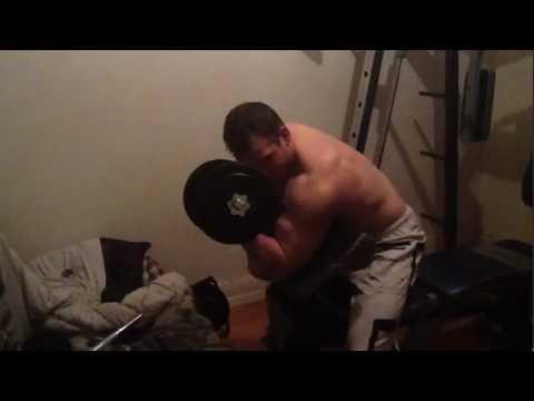 Les muscles fessiers de lexercice les home-trainers