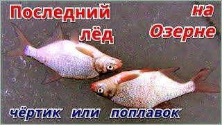 Рыбалка на озернинском водохранилище 2020 платная или нет
