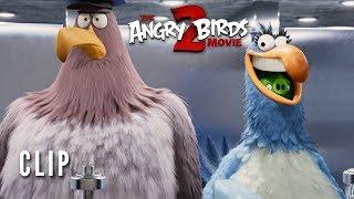 The Angry Birds Movie 2 Clip   Key Card