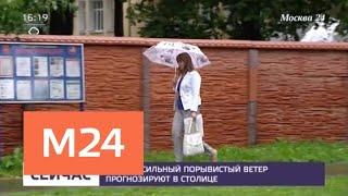 Желтый уровень погодной опасности продлили до 19 июля - Москва 24
