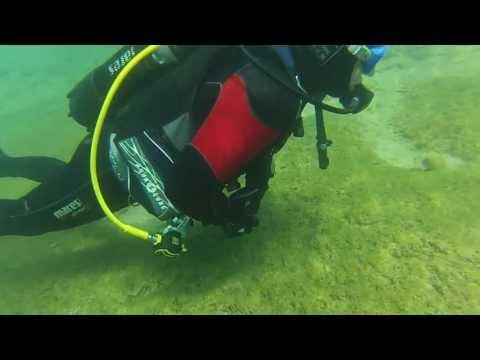 Tauchring Reutlingen Süßwasser- Tauchgänge