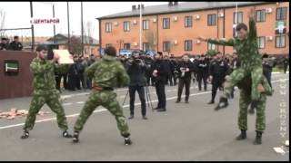 спецназ Рамзана Кадырова  показательные выступления в честь гостей из ОАЭ
