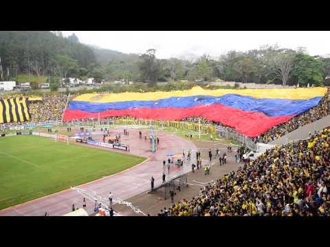 """""""Salida Deportivo final Táchira Trujillanos 2015 Pueblo Nuevo despliegue trapos y bandera gigante"""" Barra: Avalancha Sur • Club: Deportivo Táchira"""