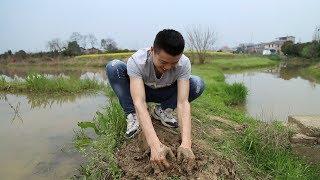农村池塘水库最危险的漩涡,能把人吸进去,看着都怕 【欢子TV】