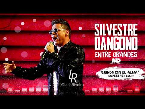 Brindo Con El Alma (audio) Silvestre Dangond Y Cocha...